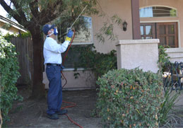 spraying the home of a customer
